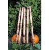 Ručně vyřezávané Didgeridoo z Bali ze světlého bambusu.